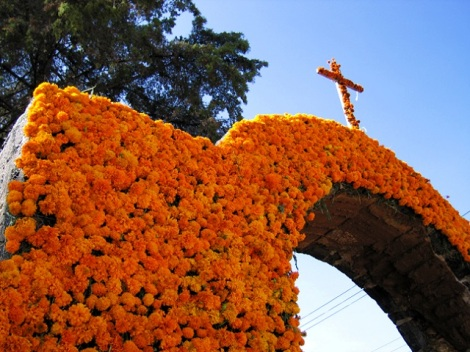 Marigolds3_640x480_marigold_covered_arch_day_of_the_dead